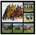 HORSE RACING  - SOUVENIR NOVELTY COASTERS - EASY CLEAN - BRAND NEW - GIFT
