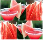 SUGAR BABY WATERMELON Seeds - 10 lb oval red flesh is very sweet - EASY TO GROW