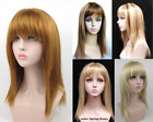 WOMENS LADY LONG STRAIGHT HAIR LAYERED WIG WITH FULL BANGS CENTER PARTING DADA