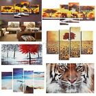 Various Modern Art Oil Painting Canvas Picture Home Wall Decoration Unframed new