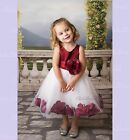 White Wedding Pageant Rose Petal Flower Girl Dress Toddler Pageant Recital 167T1
