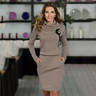New Long Sleeve Winter Autumn Women Ladies Dress High Neck Sheath Clothing Dress