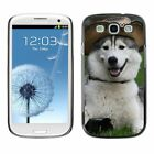 Hard Phone Case Cover Skin For Samsung Husky dog in cowboy hat