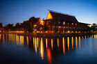 One DVC Disney Vacation Club Point 2017 Timeshare Rental ~ 44 Points Available