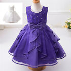 Kid Embroidered Birthday Pageant Wedding Princess Party Formal Flower Girl Dress