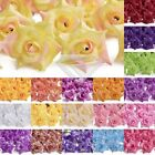 50pcs Curling Rose Artificial Flowers Wedding Party Home Decoraction 50mm