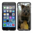 Hard Phone Case Cover Skin For Apple iPhone Beasts short-tailed kang