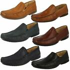 Mens Anatomic Moccasin Shoes 'Tavares'