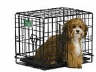 Dog Crates And Kennels 18
