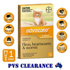Advocate Orange 1 for Cats & Kittens Up To 4 kg Single Pack - Kitten Flea & Worm