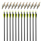 "Archery 32"" Fiberglass Arrows SP500 for Compound & Recurve Bow Hunting Broadhead"