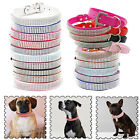 Dog Cat Collar 3-5 Row Diamante Durable Strong D Ring Silver Buckle S, M & L