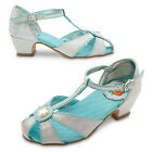 disney anna dress uk - NWT DISNEY STORE Frozen Anna and Elsa Dress Shoes Party 10 11 13 1