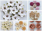 Flower & Rose Craft Embllishments Wedding Scrapbooks Crafts Invitations Floral