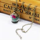 Glass Bottle Necklace Ball Chain Dried Flowers Leaves Lucky Pendant Necklace
