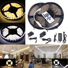 light stripe - 1m-20m 12V SMD 3528 300Leds Waterproof Flexible Warm Cool White LED Strip Light