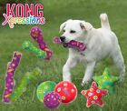 Kong Xpressions Squeaky Dog Puppy Toy - Durable Bouncy Fetch - Many Shapes Sizes