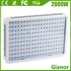 1500W 2000W 3000W LED Plant Grow Light Full Spectrum Lamp Indoor Veg