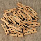 25 50 100 PLAIN MINI WOODEN PEGS, SMALL PEG FOR CRAFT MAKING, ARTS