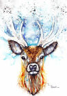 Print of Greeting Card Watercolour Stag by Artist Be Coventry Wildlife Art