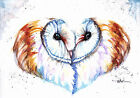 Print or Greeting Card Watercolour Barn Owls by Artist Be Coventry Wildlife Art