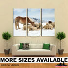 3 Panel Canvas Picture Print - Herd of Sheep Skudde and Horse 3.2