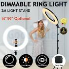 """19""""/14"""" 5500K Dimmable Diva LED Ring Light Diffuser Stand Make Up Beauty Studio"""