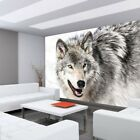 "Fleece PHOTO WALLPAPER "" no. 1754 "" ! Animals Husky Dog Winter Snow Gray! liwwi"