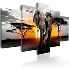 5pcs/set Elephant Oil Painting (No Frame) African Sunset Landacape Animal Wall A