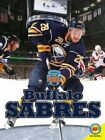 Buffalo Sabres by Nick Day: New $23.44 USD on eBay