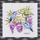 Tattered Lace BIRDS OF A FEATHER Die Cuts-6 Colours/Mixed/Your Choice-FREE P & P