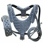 Spiked Studded Leather Dog Harness Collar Leashes set for Pit Bull Husky Boxer