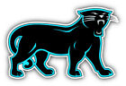 Carolina Panthers NFL Football Car Bumper Sticker Decal - 3'', 5'', 6'' or 8'' $3.5 USD on eBay