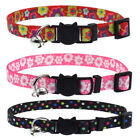 Nylon Reflective Dog Kitten Cat Breakaway Collar Tag Quick Release With Bell