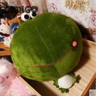 Giant Huge Head Cute Frog Stuffed animal plush soft toy pillow sofa cute gift