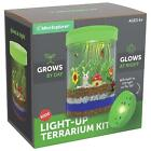 Light-up Terrarium Kit for Kids with LED Light on Lid | Create Your Own