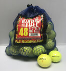 48 Hit Away/Shag Practice Used Golf Balls / Mix of Brands / Free Shipping