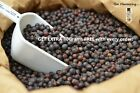 JUNIPER BERRIES WHOLE DRIED FRUIT GIN FLAVOURING FREE UK P&P Extra 10G Free