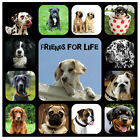 DOGS (FRIENDS FOR LIFE) - SOUVENIR NOVELTY COASTERS - NEW - GIFT IDEAS / XMAS