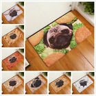 Animal Home And The Door Pad Carpet Of The Hall Decoration Of Bathroom Anti-skid