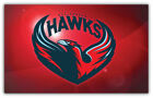 "Atlanta Hawks NBA Basketball Car Bumper Sticker Decal ""SIZES"" ID:12 on eBay"