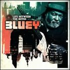 Life Between the Notes by Bluey: New