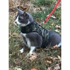 Kitty Holster Cat Safety Harness Special Camo - Sherwood Green Choose Size