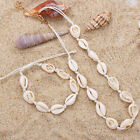 Fashion Shell Necklace Cowrie Choker  Seashell Conch  Summer Beach  Jewelry