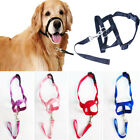 F-Halti Dog Muzzle Style Head Collar Stops Dog Pulling Halter Training