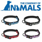 CoA Halti Adjustable Reflective Scotchlite Strong Dog Collar 4 Sizes 4 Colours