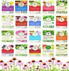 Traditional Medicinals Herbal Remedy Tea * CHOOSE YOUR FLAVOR * 16 sachets NEW