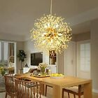 Dandelion Sputnik Chandelier Fireworks Ceiling Pendant LED Lamp Fixtures 8 Light