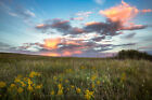 Great Plains Photography Print - Picture of Tallgrass Prairie in Oklahoma
