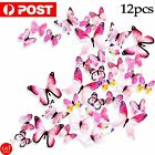 12pc 3d 3d Diy Wall Decal Stickers Butterfly Home Room Art Decor Decorations